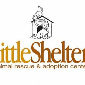 littleshelter