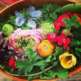 piLi flower