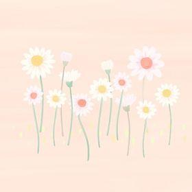 daisy maisy