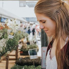 Taylor  | Indoor Plant Care Guides, House plants, and more