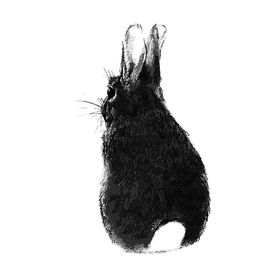 bunny's heaven