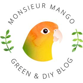 Monsieur Mango | Green & DIY Blog