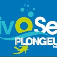Divosea Plongeurs International
