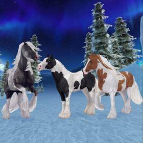 Galloper Ranch