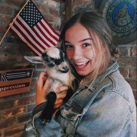Converse Chuck Taylor All Star – USA Flag Bandana | Krave Kicks