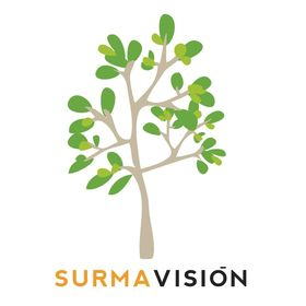 Surmavision