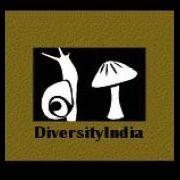 DiversityIndia