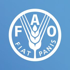un food and agriculture organization unfao on pinterest rh pinterest com