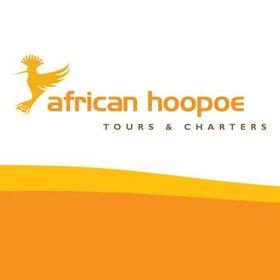 African Hoopoe Tours