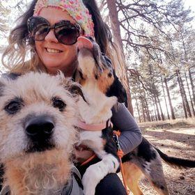 Stuff My Dog Needs   Blogger   Dog Mom   DIY Dog Stuff   Discount Pet Gear