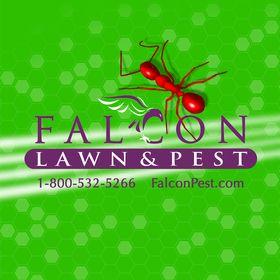 Falcon Lawn & Pest