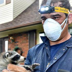 Ontario Wildlife Removal Inc.