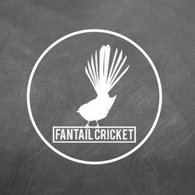 Fantail Cricket