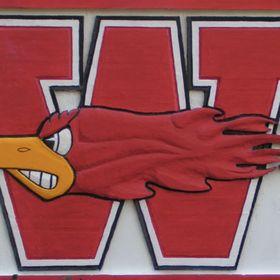 WSD Firebirds