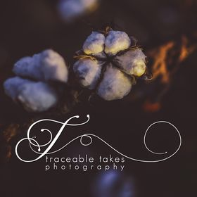 Traceable Takes Photography