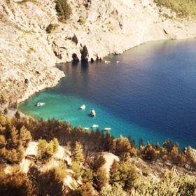Aloha Dalmatia