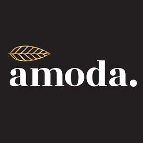 Amoda   Organic Matcha & Adaptogen Blends