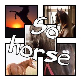 So horse