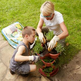 Trumilu Herb and Microgreen Gardening