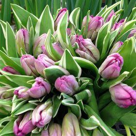 Pathelen Flower & Gift Shop, Inc