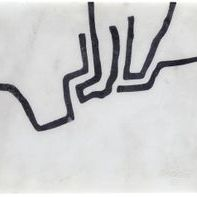 nikko Black lines
