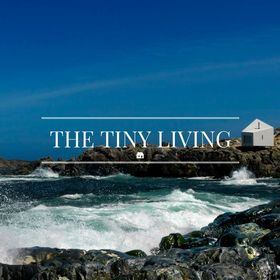 The Tiny Living