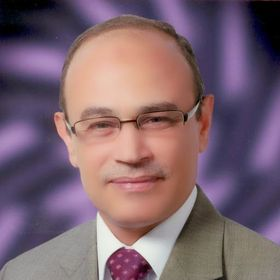 Magdy Hassanein