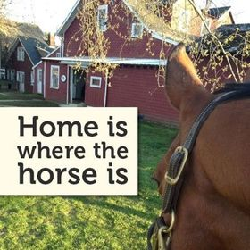 Tennessee Horse Properties