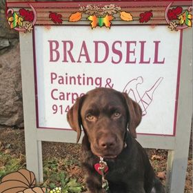 Bradsell Painting & Carpentry