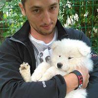 Sergiu Bodea