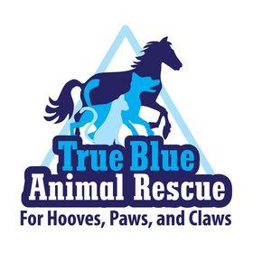 True Blue Animal Rescue