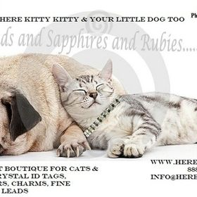 Here Kitty Kitty and your little dog too