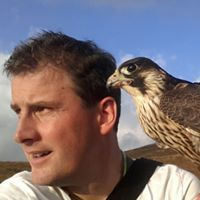Eoghan Ryan (eoghanryan500) on Pinterest