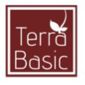 Terra Basic