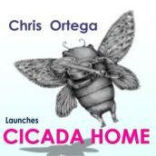 Cicada 3D Design