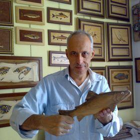 Alberto Chiodelli