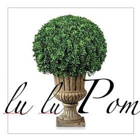 lulu Pom