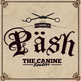 Pash The Canine Boudoir
