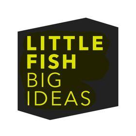 Little Fish Big Ideas