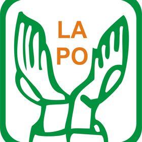 LAPO Lift Above Poverty Organization