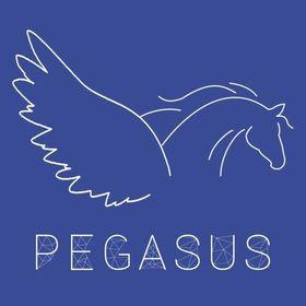 Agence Pegasus