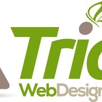 Triad Web Design Service