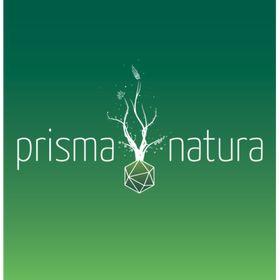 Naturheilpraxis Prisma Natura - Nina Vöhringer
