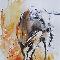 jose vaca