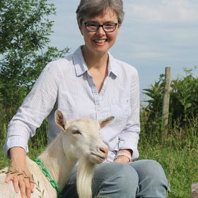 The Thrifty Homesteader - Deborah Niemann   Author