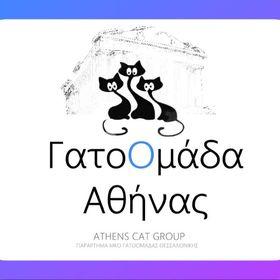 GatoOmada Athinas