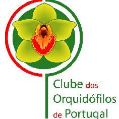 Orquidofilos Portugal