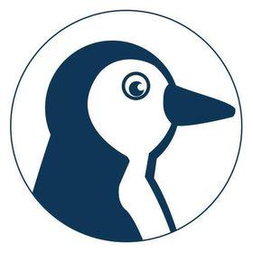 Pinguin Druck Pinguindruck Auf Pinterest