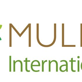 Mulberry International School School