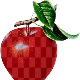 The Checkered Apple